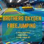 Brothers' Trampolining Image