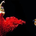 Flamenco Night Image
