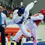 Taekwondo Competitor Pass Image